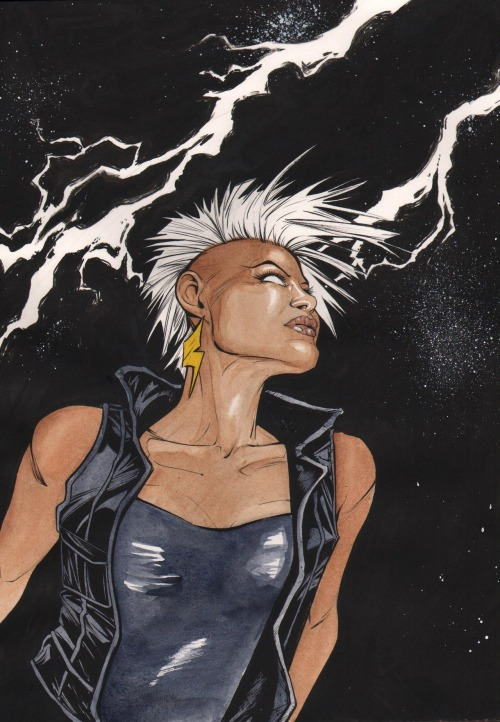 Mohawk Storm commission