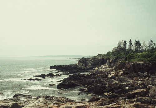 themarvel0us:  maine (by Joel E Gomez)
