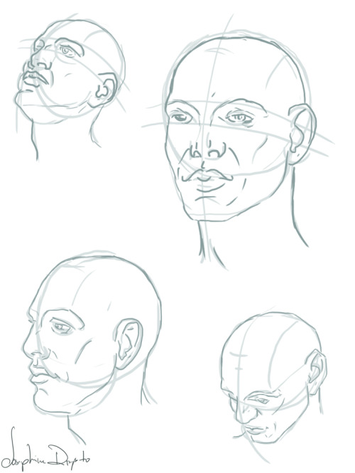 Male head and facial anatomy. This shit is hard and giving me a headache. Phoenix tomorrow bright and early, so that's all for tonight.-Josephine