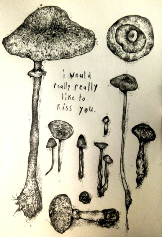 nakedbearladies:  he's a fungi but i have morels