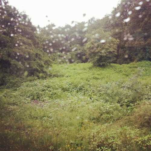 It's a bit wet outside!  (Taken with Instagram)