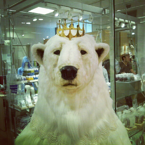 Polar bear in a crown and pearls. #lol #wtf #bear #japan #mall (Taken with Instagram)