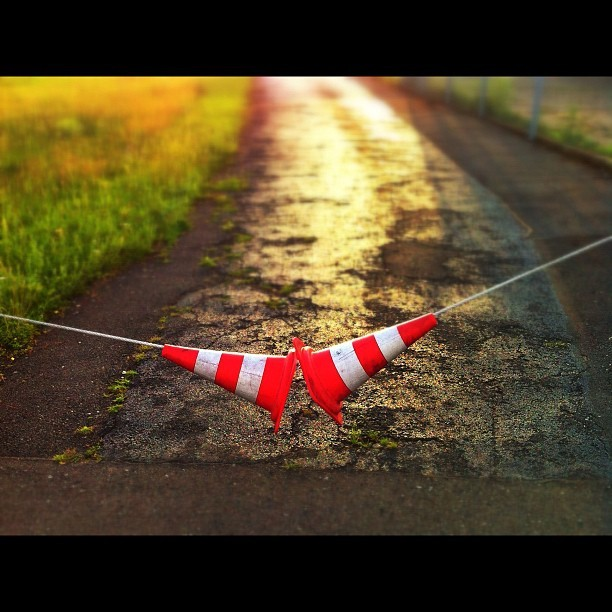 Cone Zone (Taken with Instagram)