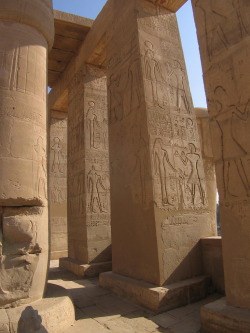 aboutegypt:  Ramesseum (by becklectic)