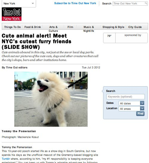 I'm in Time Out New York as one of NYC's cutest furry friends!! http://www.timeout.com/newyork/things-to-do/cute-animal-alert-meet-nycs-cutest-furry-friends-slide-show