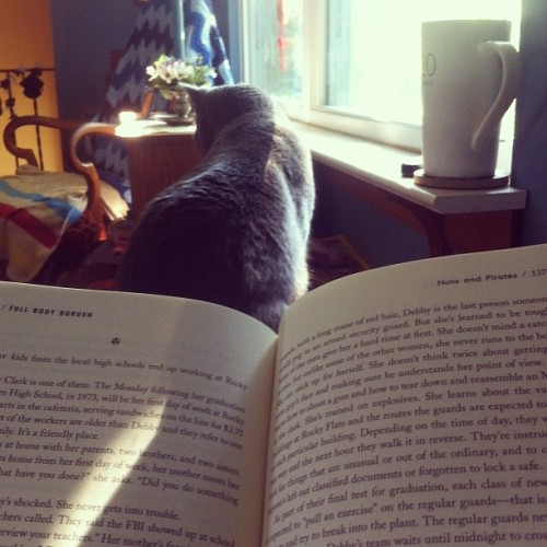 Morning light/a good book/a good cat/a cup of tea. Don't make me go to work.  (Taken with Instagram)