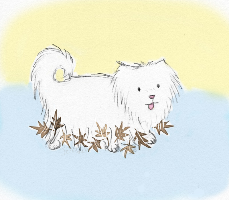 dog with leaves (by Jellibat)  I heard a strange rustling while out walking today, when i turned around it was otherwise immaculately groomed small silky long haired dog with heaps of dry leaves stuck around the bottom of his fur, he seemed to be enjoyng himself