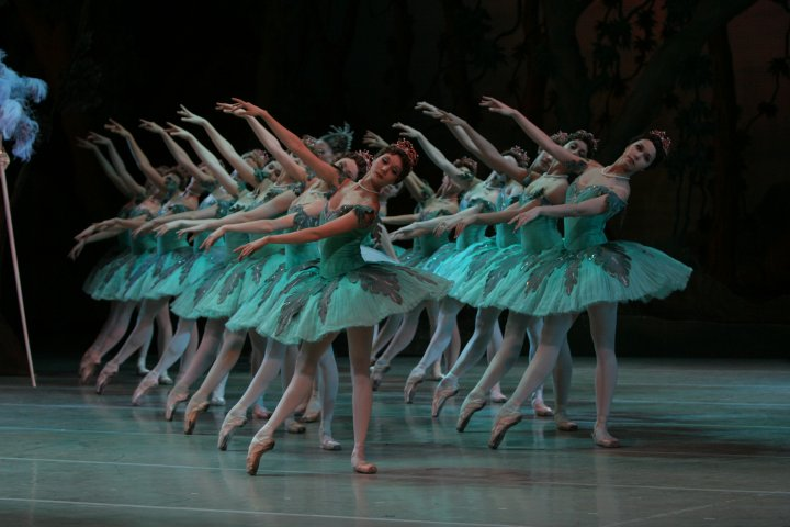 balletisart:  Bolshoi Corps de Ballet in Sleeping Beauty