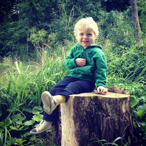 Peter on stump.  (Taken with Instagram)