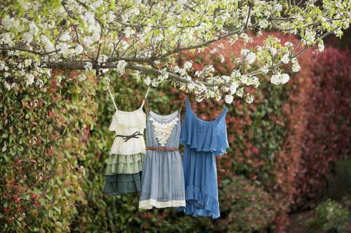 greyveins:  Seize the Summer by ModCloth on Flickr.