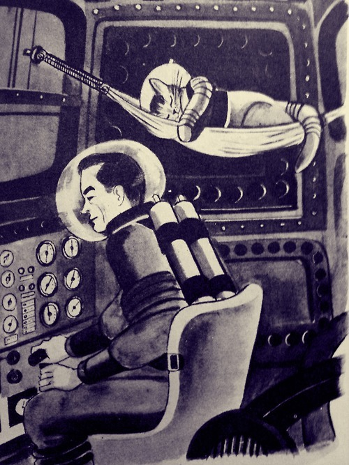 kittehkats:  Cats in Space