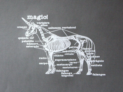 [unicorn anatomy.]
