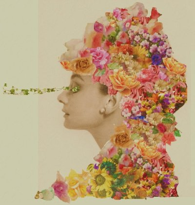 "thecollectivecollage:  ""In Bloom"" by ArtdreyHepburn"