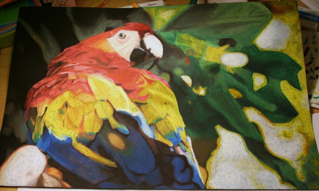 eatsleepdraw:  An oil pastel piece I did in my art class freshman year. It got 1st place at our school art show! Check out my Tumblr. [: