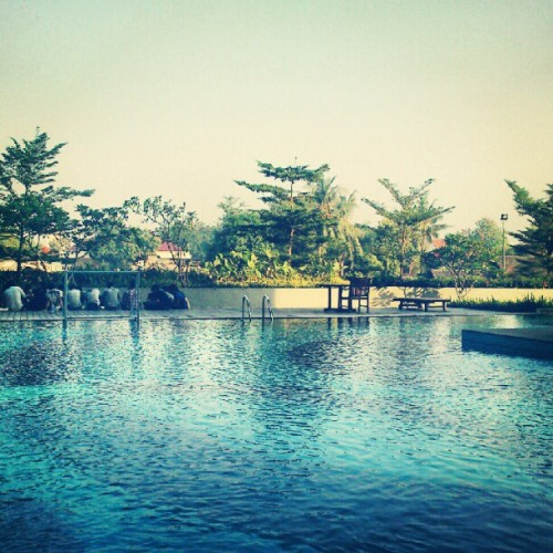 #binus #bina #nusantara #pool #tree #water  (Taken with Instagram)