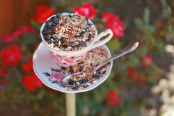 waltzingmatildablog:  Teacup bird feeder! So lovely!
