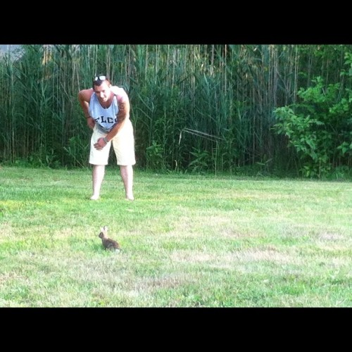 "Timmy vs baby bunny. "" goddamn it bunny just come here!!"" @tparish33  #bunny  (Taken with Instagram)"