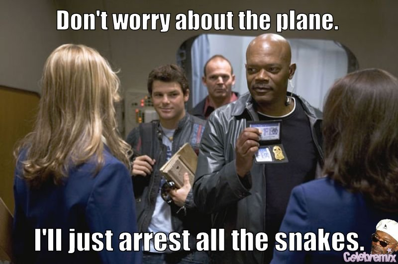 "I'm not sure why the phrase ""snakes on a plane"" became a movie."