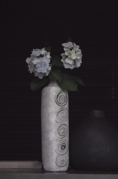 jikankokoro:  Hydrangea with yoko komae's clay work.