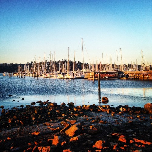 Sausalito sunset (Taken with Instagram at Bar Bocce)