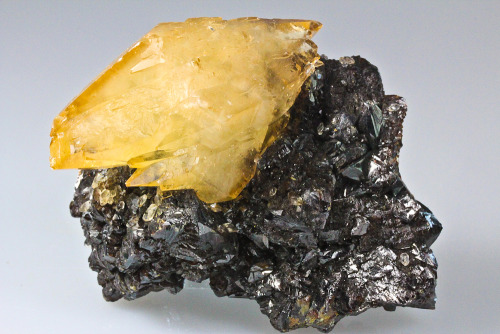 Amber calcite on sphalerite  Elmwood  Mine, Carthage, Smith County, Tennessee, USA