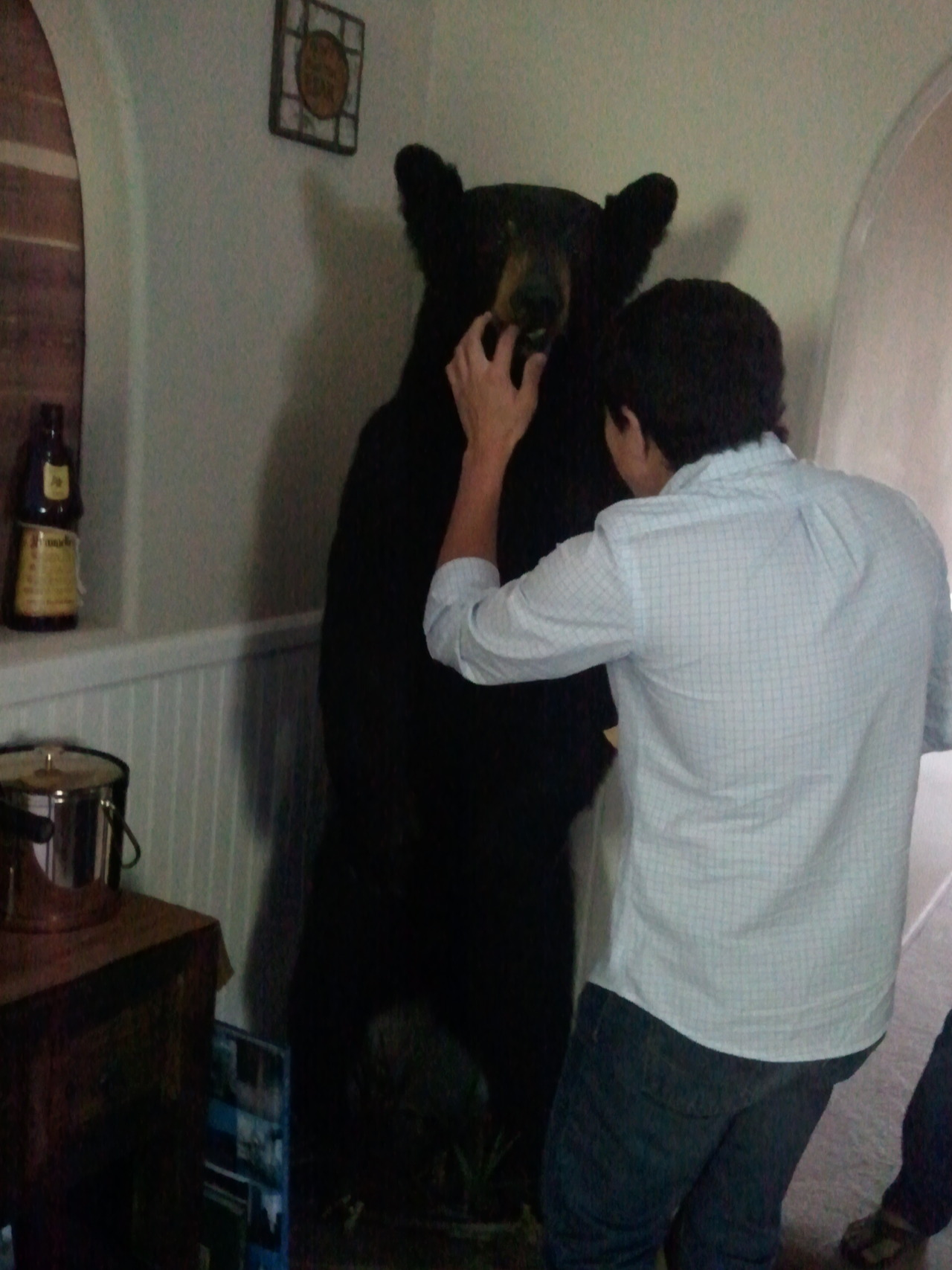 The guy who lives here shot this bear! and put him in his living room! He then showed me his collection of gun. Has like about 100 different guns! Had just sold his AK47, how awesome would that have been to hold in my hands.