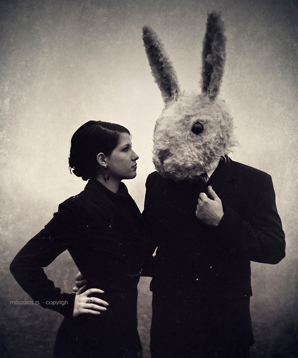 cuummblr:  rabbit tale II by ~SuzyTheButcher