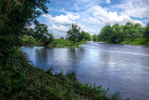 Today's Photo Hodder, Meet The Ribble. During our hike around the Tolkien Trail, we came across this beautiful scene that you could only access by hiking down a steep stepping path. This is where the River Hoddle joins the River Ribble and continues on as such. It marked the ¾ point of our journey. From here, you carry on following the Ribble bank all the way back to the start of the Tolkien Trail, which is of course the Shireburne Arms. ;-] Click here for the full-size image.