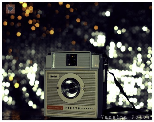 My Kodak Brownie Fiesta