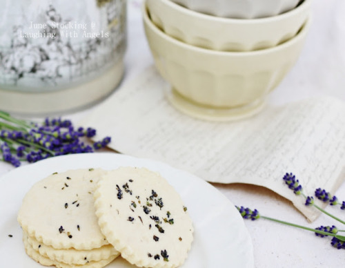 source: Laughing with Angels ~ June's lavender shortbread cookies sound delicious ~ and they are so pretty!