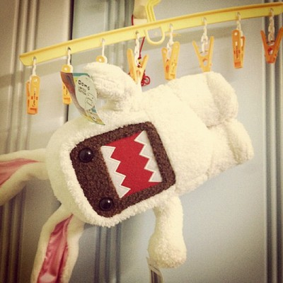 Once again, poor #domo D: (Taken with Instagram)