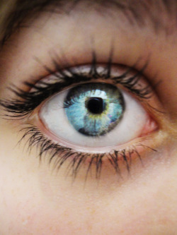 sarleeannn:  Perfect eye