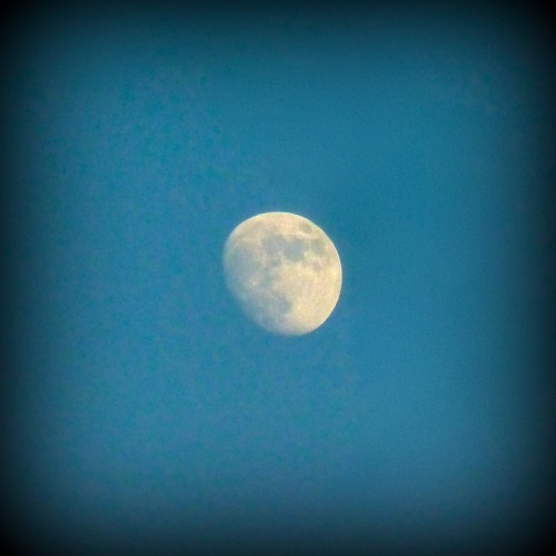 My little point-and-shoot camera took a decent moon photo! Yay.
