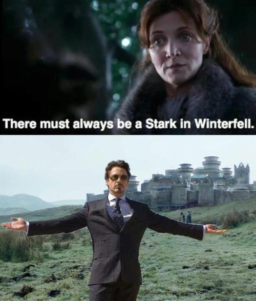 There must always be a Stark in Winterfell.  Huge thanks to my friend BusDriver for introducing me to this awesome pic yesterday. :-)  via imgur