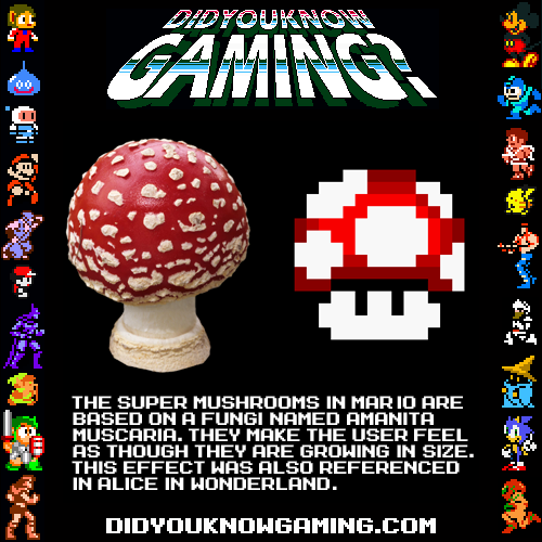 didyouknowgaming:  Super Mario Brothers.  Submitted by Nightsider.