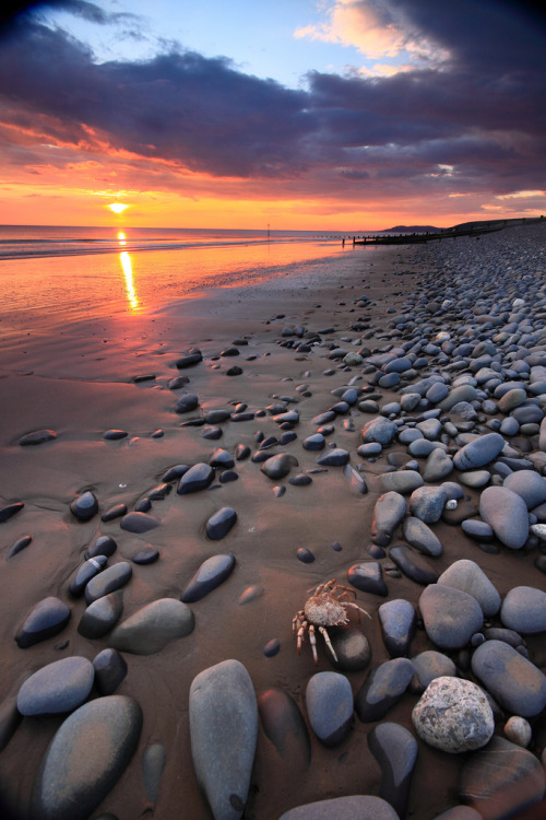 Ynyslas sunset (by tomd2012)