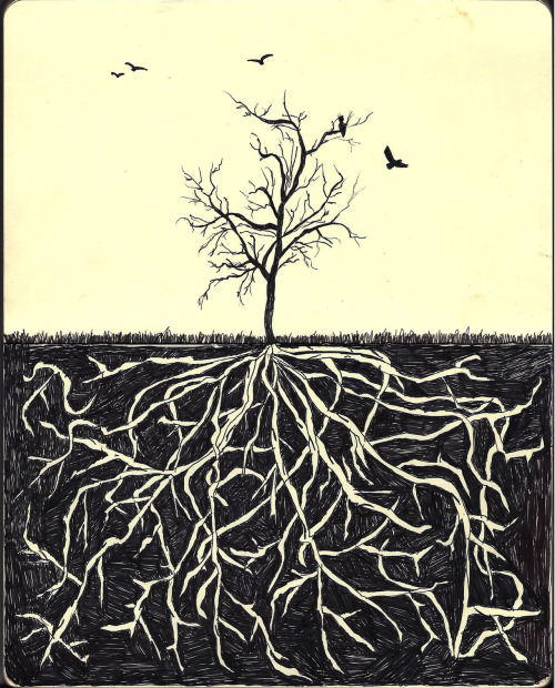 "eatsleepdraw:  ""Roots"" by Renee Louise Anderson"