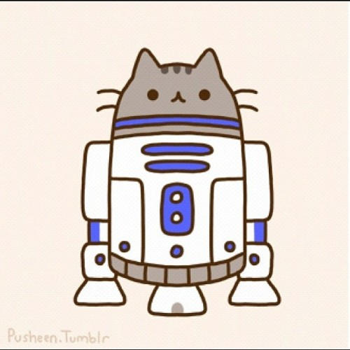 browniebebs:  Pusheen R2-D2!! #pusheen#cat#kitty#r2d2 (Taken with Instagram)