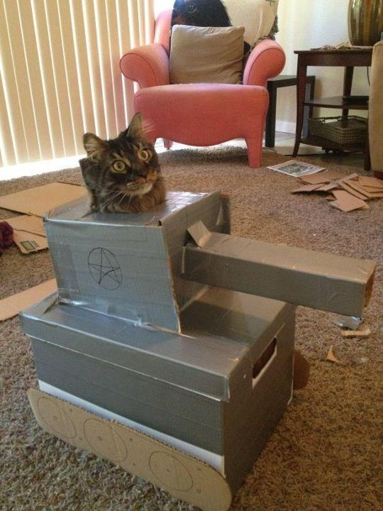 """Prepurr for battle!"" Photo/caption via 4chan"