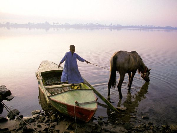 Morning on the Nile. #Egypt #NileNorth of Egypt's Aswan High Dam, a boy holds the reins of his horse as it drinks from the Nile River. In the early 1970s, the dam ushered in an era of water abundance for a country almost wholly dependent on the flow of the Nile.