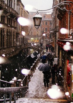 jannix1:  This was taken during a 2005 visit to Venice. It hadn't snowed there in 15 years. It was beautiful!
