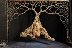 A wonder in the art of Shibari!