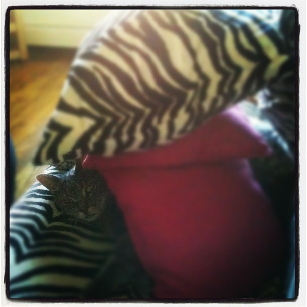 Someone's hiding… (Taken with Instagram)