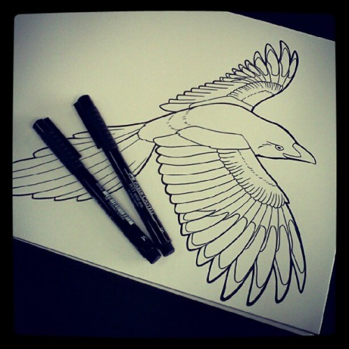 Bird is the word. #bird #ink #linework #tattoo #illustration (Taken with Instagram)