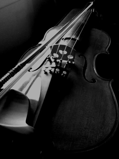 heartagramobsession:  My beautiful viola. Her name is Shannon. Been playing for almost seven years now and her and I will go places in the future. ♥