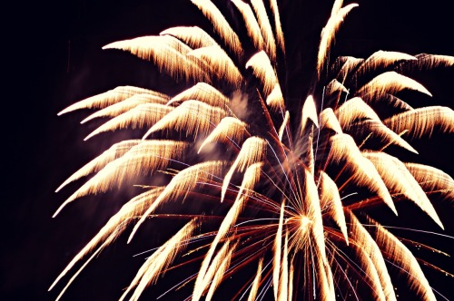 vibrancyphotography:  My first attempt at photographing fireworks ^^;