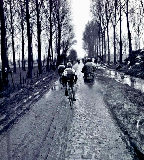 "theoddjacket:  ""Cycling is like church—many attend, but few understand."" - Jim Burlant"