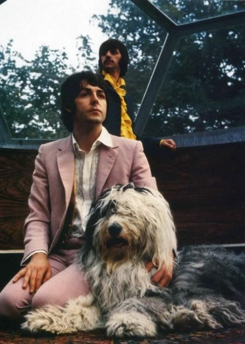 Ringo Starr and Paul McCartney with Martha.