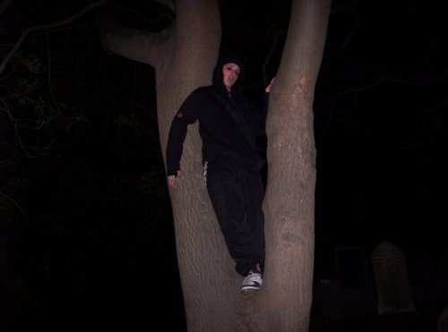 "insanitywetrust submitted this photo with the comment ""Cemetery Tree"" Look closely, fellow goths up trees appreciators, for you will see that this person is indeed in a cemetery. Is this a goth or is this a guy dressed in black?  'What is the difference?', I hear you ask, and I say to you: shoes.  I know no goths who would wear sneakers such as those pictured.  He may just be a goth who has made questionable footwear choices, though.  I know I'm questioning my own footwear choice today.   If this guy isn't a goth then he has made a significant effort with his eyeliner, nail polish, and thumb-holes in his top. He's not smiling, it's night time and he's a decent height up the tree.  Good effort.  Points deducted for questionable shoe choices. 4.8 out of 5 - Questionable shoe choices will always come back to bite you."