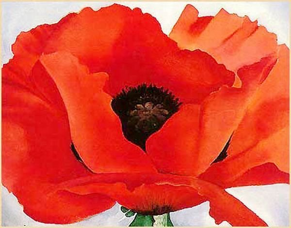 dominusvenustas:  Giorgia O'Keeffe, Big Red Flower, c.1919 No words are necessarily to explain the power of this painting by American artist, O'Keeffe. Take from it what you will. Nature is a wonderous thing.